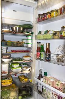 EcoSolarCool, Refrigerator, Solar, Off-grid,
